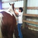 2012 horse Camp